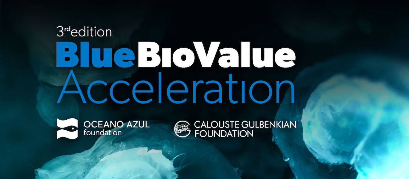 BLUE BIO VALUE 2020
