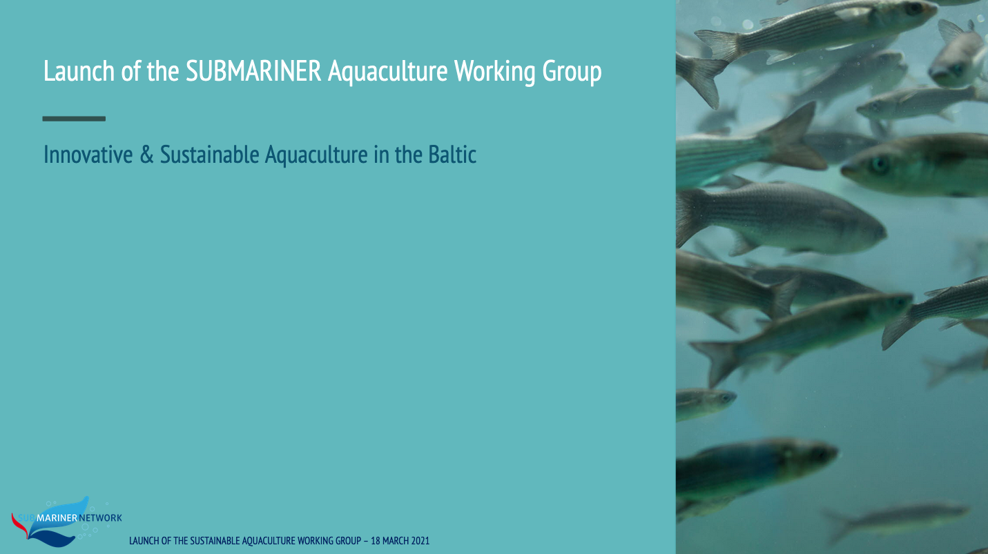 Better Off Blue Event #2: Launch of the SUBMARINER Aquaculture Working Group