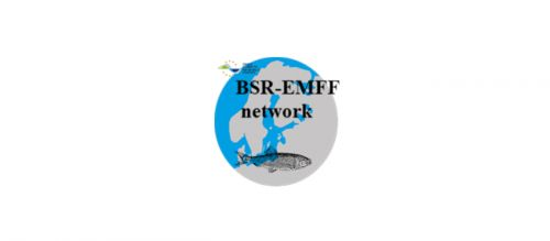 A network for the Maritime and Fisheries Programme in the Baltic Sea Region - the BSR-EMFF network