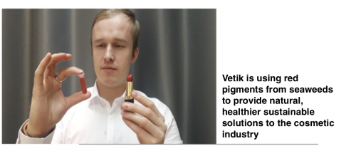 ALLIANCE case Vetik in an interview to BioMarine: Discovering the potential of red seaweeds