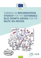Implementation Strategy for the Baltic Blue Growth Agenda