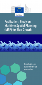 Study on Maritime Spatial Planning (MSP) for Blue Growth